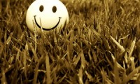 The Smile From The Grass
